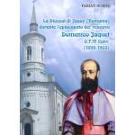 La Diocesi de Jassy (Romania) durante l'episcopato del vescovo Domenico Jaquet O.F.M. Conv. (1895-1903)