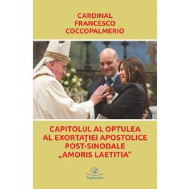 Capitolul al optulea al exortaţiei apostolice post-sinodale Amoris Laetitia