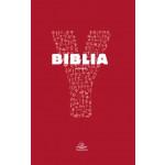 Y – Biblia. Biblia Bisericii Catolice pentru tineri